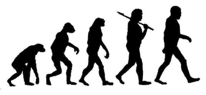 Evolution of Beer Part I