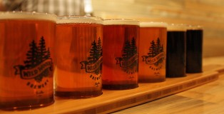 wild woods brewery boulder colorado