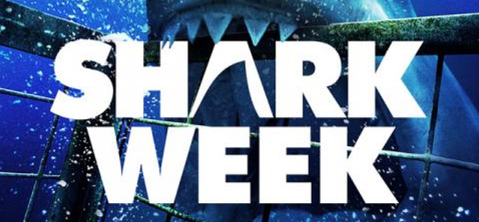 Discovery's Running Out of Ideas for Shark Week Programming