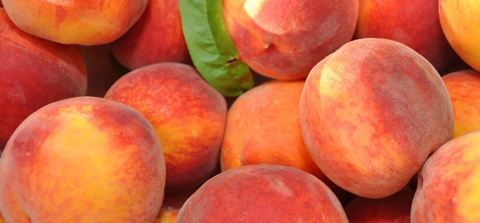 Homebrewing: Brewing with Fruit