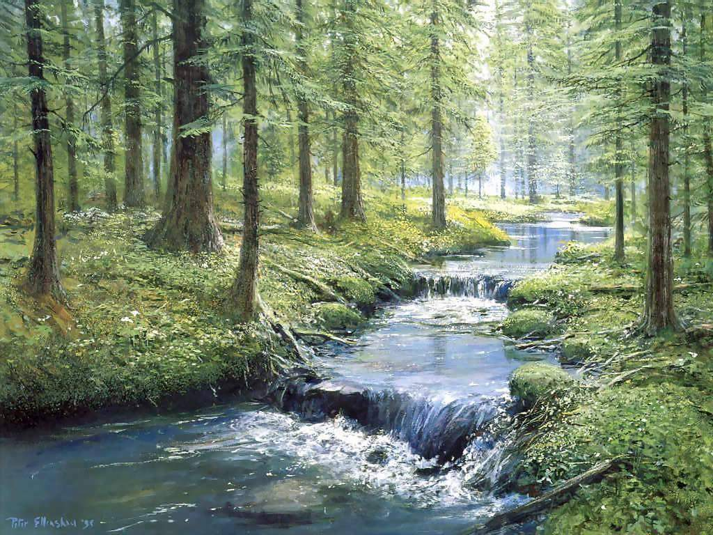 Fine-Art-Garden-Within-Forest-Stream-1b6k3za