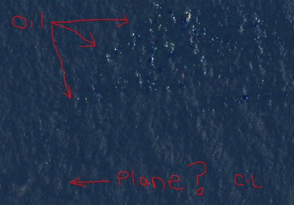 Courtney Love Plane Guess