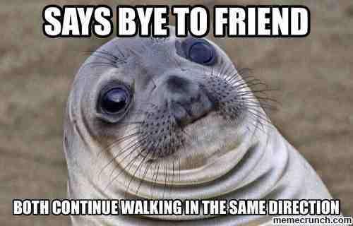 awkward-moment-seal-saysbye