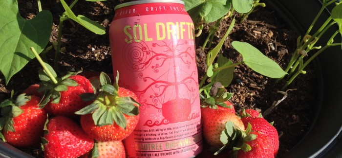 Madtree Brewing | Sol Drifter