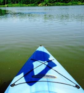 PD kayak shawdow