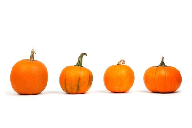 ckbc - pumpkin saison cask - dbb - 10-29-14