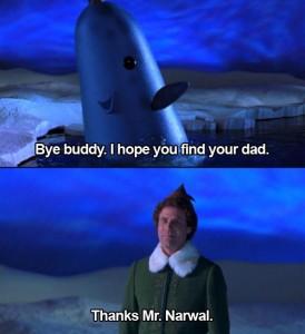 Narwhal Elf