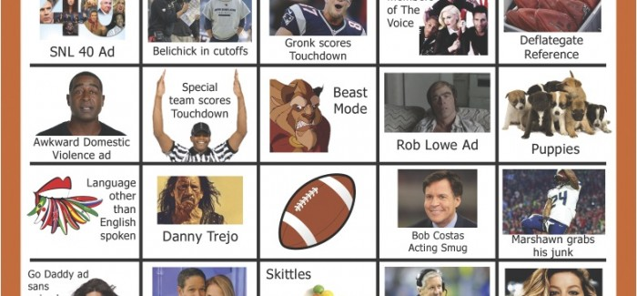 Super Bowl Bingo Board XLIX