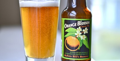 Orange Blossom Cream Ale