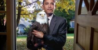 obama bald eagle