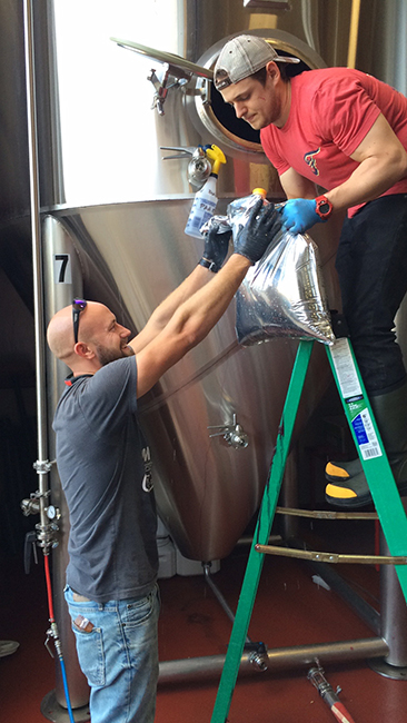 The team adds the cranberry puree during the brewing process. (Courtesy: Red Hare Brewing Co.)