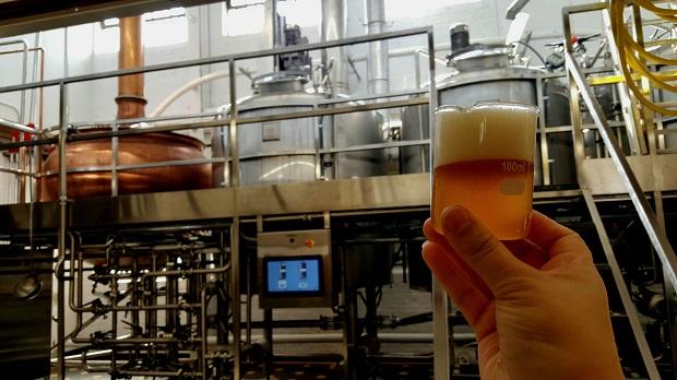 Dovetail Brewery Hefeweizen, credit: Alex Chavez