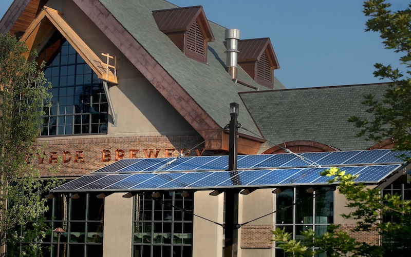 """One of the """"tree-like"""" solar panel posts around the Sierra Nevada Mills River brewery."""