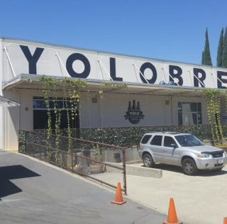 Yolo Brewing Encourages Personalization, Experimentation