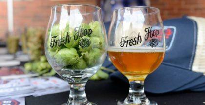 Fresh Hop Fest
