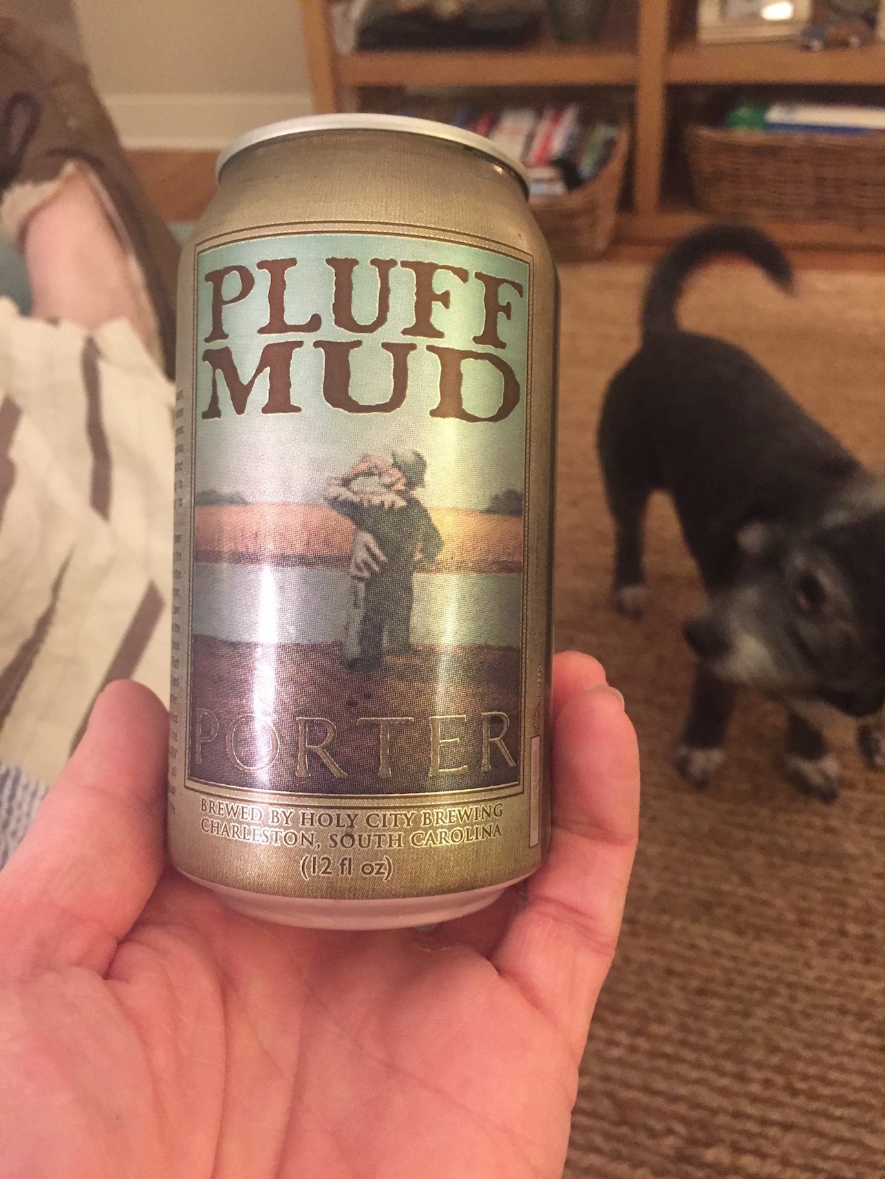 holy_city_brewing__pluff_mud_porter-_null_