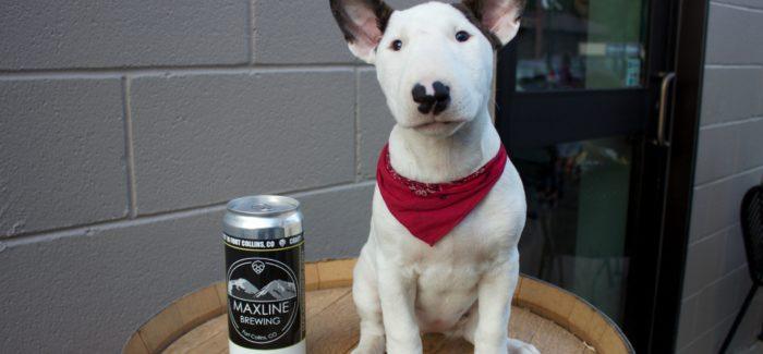 Brewery Showcase | Maxline Brewing