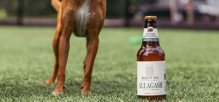 How Craft Brewers Use Their Influence to Help Out Man's Best Friend