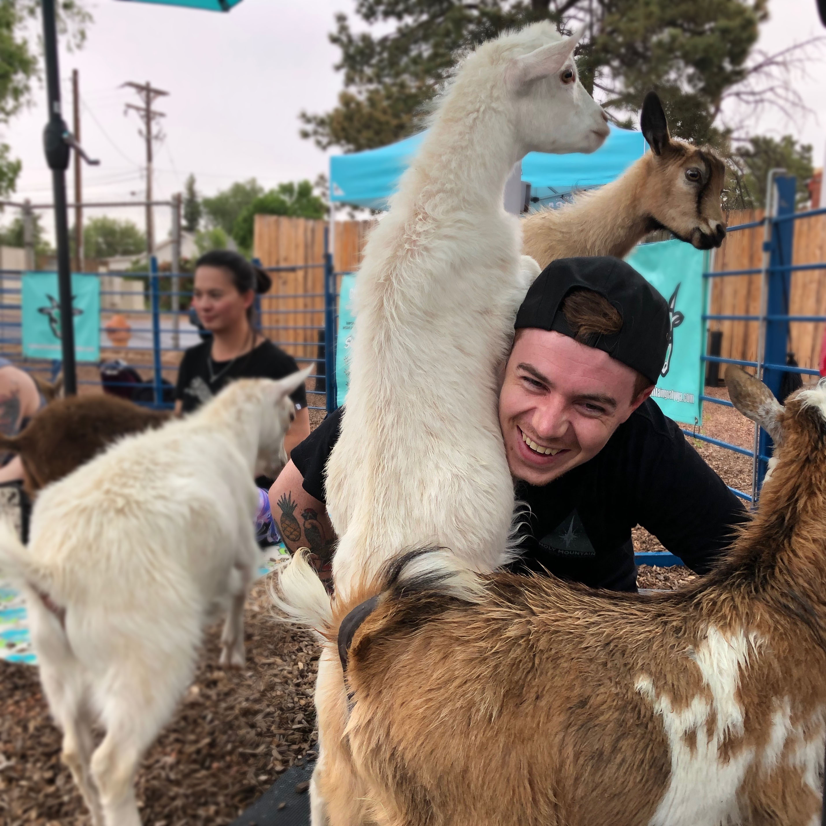 Goat Yoga at Goat Patch Brewing Co.