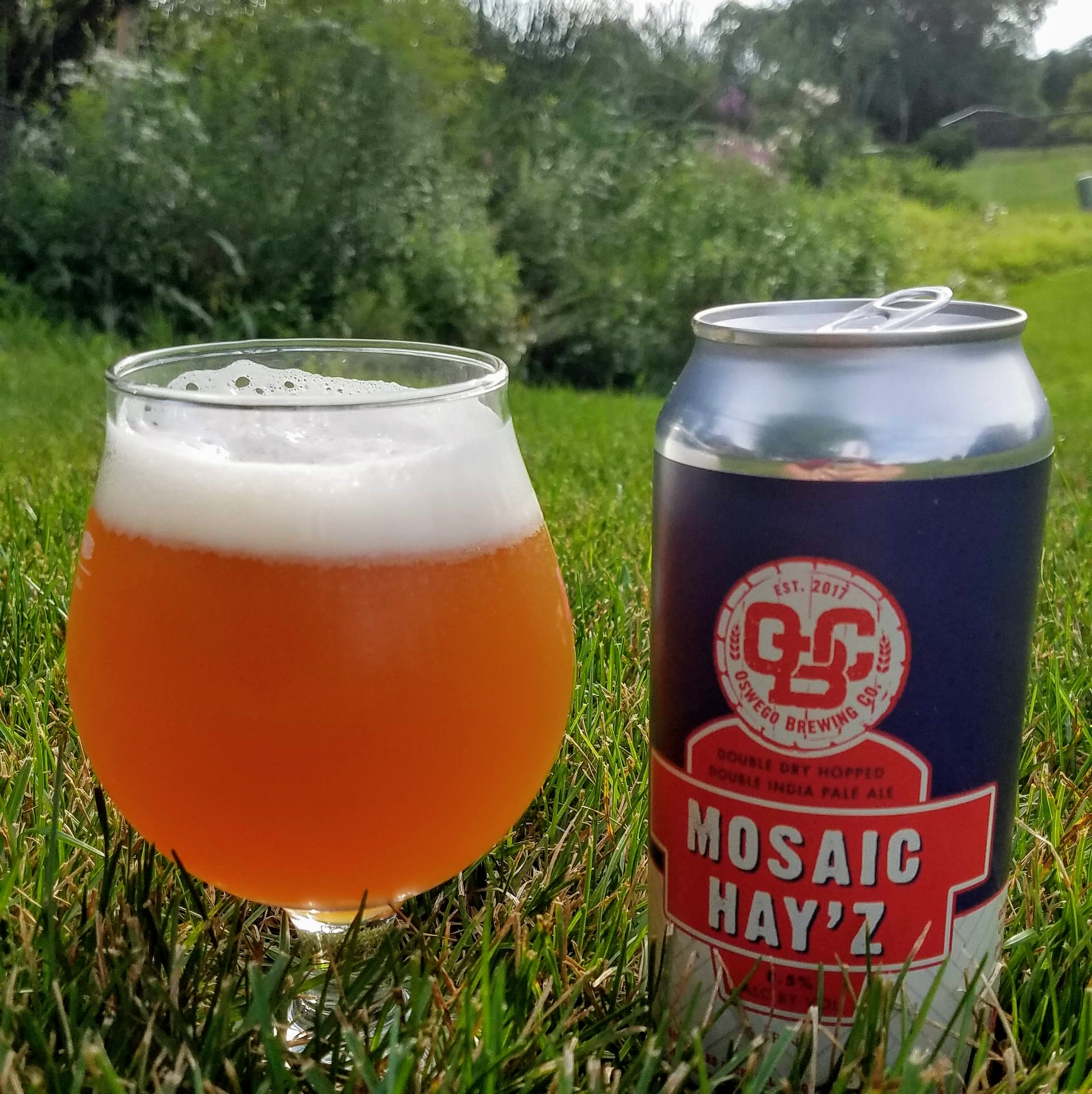 Oswego Brewing Mosaic Hayz