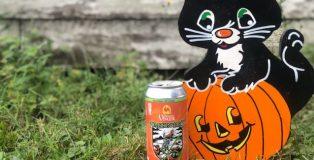 brewery vivant pumpkin tart