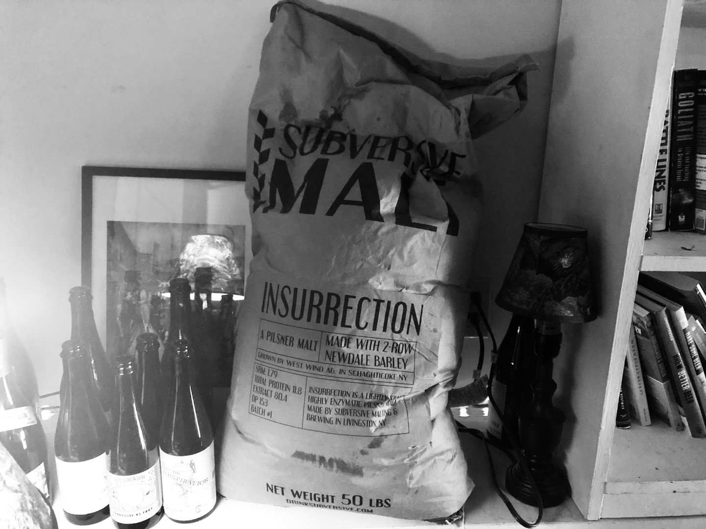 Subversive Malting and Brewing