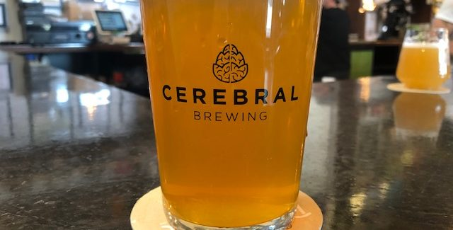 Cerebral Brewing | Character Reference Foeder Vienna Lager