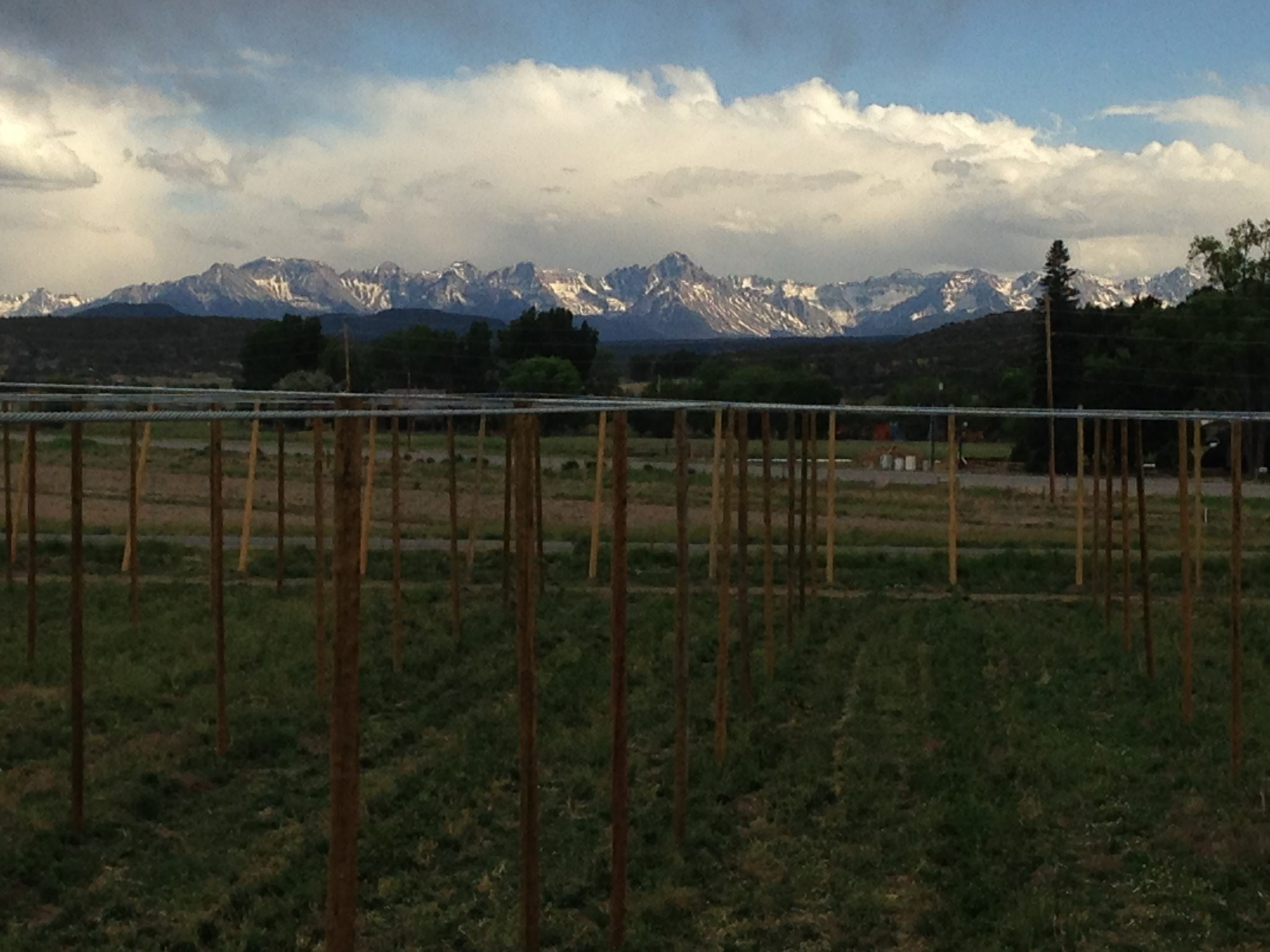 Billy Goat Hop Farm Mountains