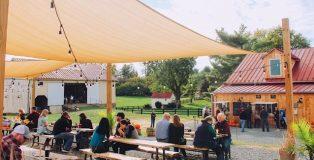 Patrons enjoying Wheatland Spring Farm + Brewery