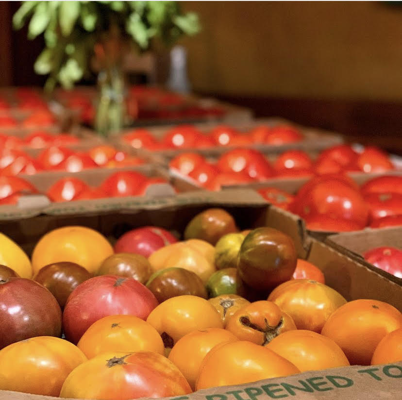 Organic heirloom tomatoes from Terra Bella for sale at Broadway Brewing
