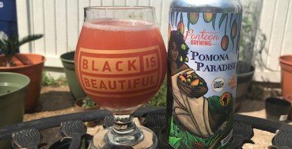 Pomona Paradise Smoothie-style Fruited Sour