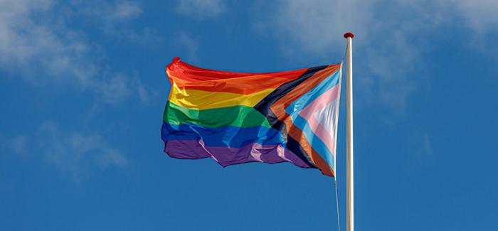 Ultimate 6er   Pride Milestones in America
